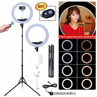 24W Dimmable Ring Light Lamp + Mirror Phone Holder + Stand fr Studio Photo Video