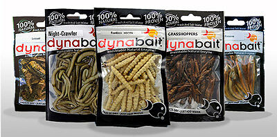 Dynabait freshwater bait -minnows, grasshoppers, locusts, bamboo and earth worms