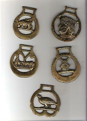 5) Lot of 5 horse brass bridle medallions - as shown - need cleaning