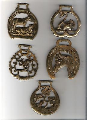 6) Lot of 5 horse brass bridle medallions - as shown - need cleaning