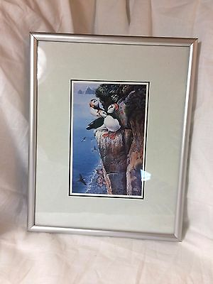 """Matted and 8"""" x 10"""" Framed Puffins on Rock Cliff Alaska Gary Lyon Print 1985"""