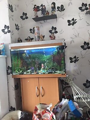 125 Litre Fish Tank Complete With Fish Cupboard
