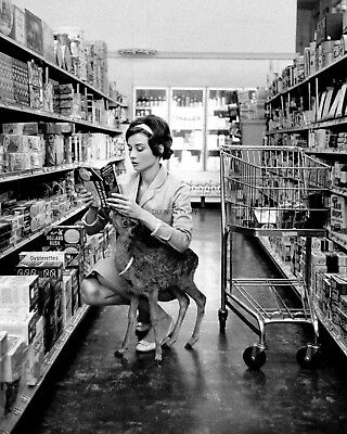 "Audrey Hepburn Grocery Shopping With Her Pet Deer ""pippin"" - 8X10 Photo (Zz-821)"