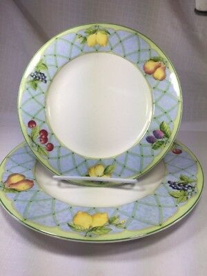 Mikasa Optima Y4001 Fruit Rapture Dinner and Salad Plate Dishes Dinnerware