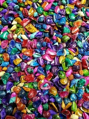 Lot of Dyed, Multi-colored Mixed Sea Shells 3+ oz for Crafts or Coastal Decor