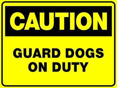 (2 X Signs) Caution Guard Dogs On Duty - Sign 300 X 200Mm - Corflute Sign