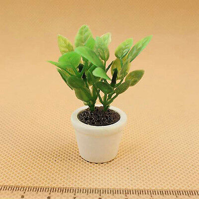 1:12 DollHouse Miniature Green Plant in White Pot Garden Patio Yard Accessories