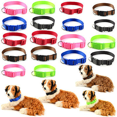 Collier Chien Chat Reglable Nylon Clip Sangle Harnais Animaux Promenade