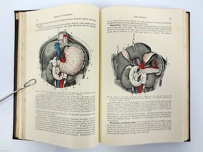Antique 1896 Anatomy Splanchnology Medical Book by Quain 337 Illustrations