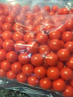 Oil based marking paintballs, permanent orange, cattle  goat sheep livestock