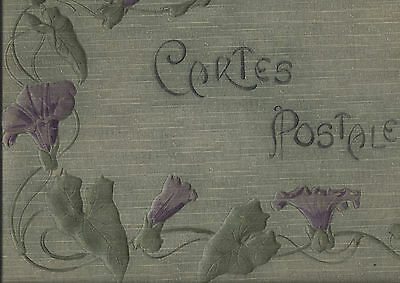 French Art Nouveau Flowers Cartes Postale empty postcard album  c1904 France