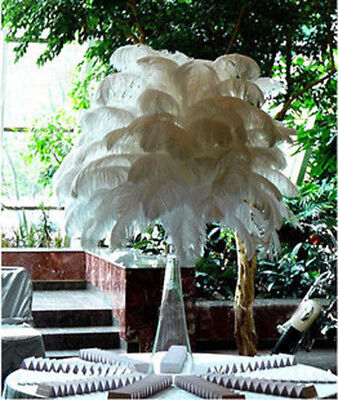 10X Set Ostrich Feathers Plume Centerpiece for Wedding Party Table Decoration UK