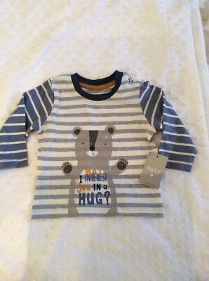 BNWT baby boy t shirt bear 0-3 months