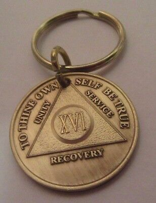 Alcoholics Anonymous 31 Year AA Bronze Medallion Key Chain Token coin keychain