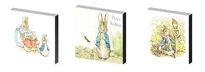 Peter Rabbit Canvas Art Blocks/ Wall Art Plaques/pictures
