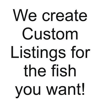A special listing for another fish lover, herr.a2