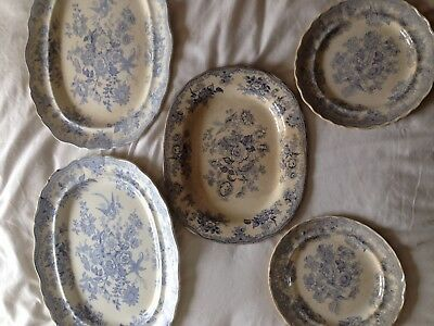 Asiatic Pheasants Old Meat Plates 5of