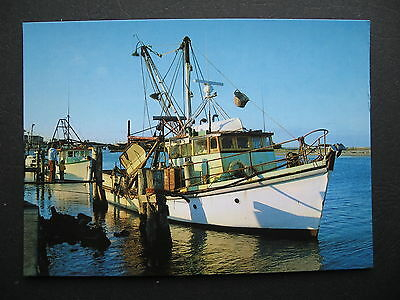 Forster Fishing Boat NSW Australia