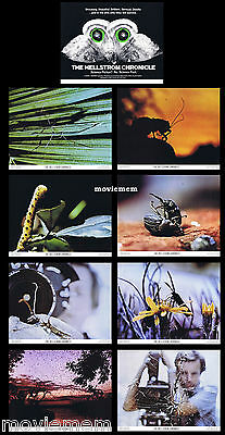 THE HELLSTROM CHRONICLE Rare LOBBY CARD SET Entomology Lawrence Pressman Insects