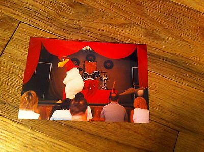 Candid Photo Of FOGHORN LEGHORN Six Flags Great Adventure TAZ Bugs Bunny OOAK