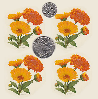 "4 x Waterslide ceramic decals Decoupage Marigolds  Approx 1 3/4"" x  1 3/4"" PD610"