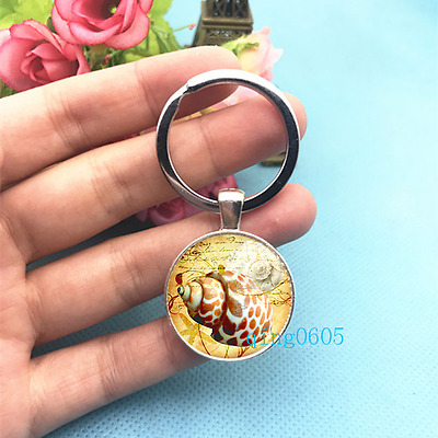 Sea Shell Art Photo Tibet Silver Key Ring Glass Cabochon Keychains -463