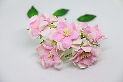 10 Pink Tone Gardenia Flower Mulberry Paper for Craft & D.I.Y. Wedding
