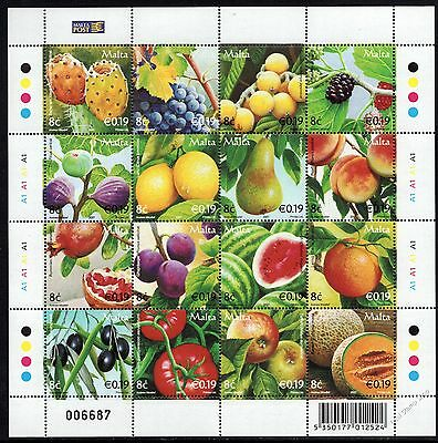 Malta 2007 Fruits Sheet  SG1519 - 1534 Complete Set of 16 Unmounted Mint