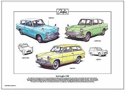 FORD ANGLIA 105E - Fine Art Print A3 size - Super, De Luxe & Estate illustrated