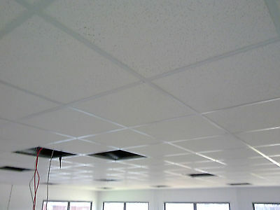 suspended ceiling fitting service