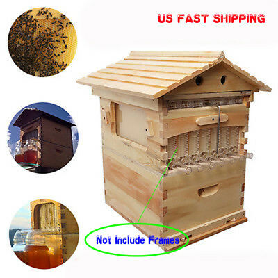 7PCS Beehive Wooden Brood Beekeeping House Box For Auto Honey Beehive Frame