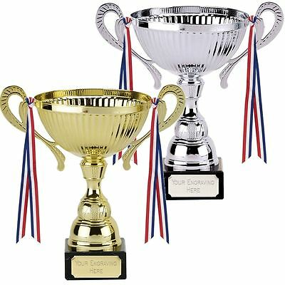 Large Silver/gold Presentation Cup Trophy Multi Award – Free Engraving