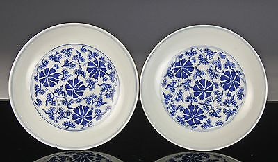 Fine Pair Chinese Porcelain Blue White Lotus Scroll Dish- Daoguang Mark + Period