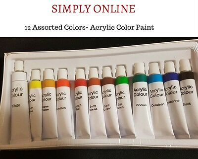 Acrylic Colour Paints  12 Assorted color  - Artist and Craft Use - Free Shipping