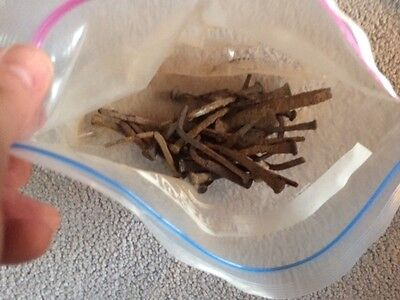 Bag of Old Rusty Square Nails-Vintage