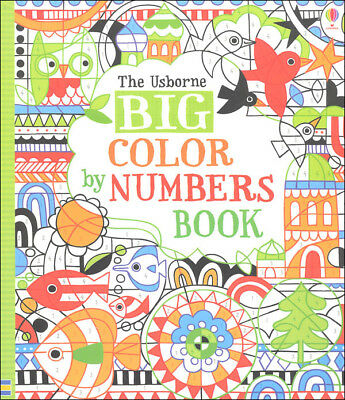 Big Color by Numbers Book ~ Usborne book 516062 ~ NEW!