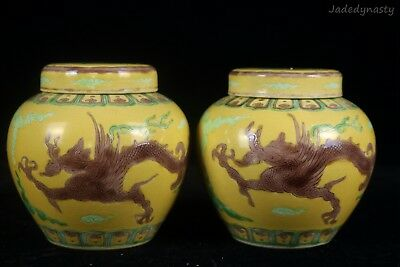 A Pair Chinese Beautiful Famille Rose Pottery Dragon Pots