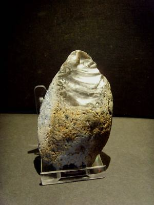 Lower Palaeolithic - Superb Acheulean point -   UK C.350,000+ BP