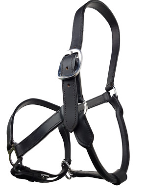 Rumani High Quality DD Leather Halter with Rolled Throat With Strong Iron Hardwa