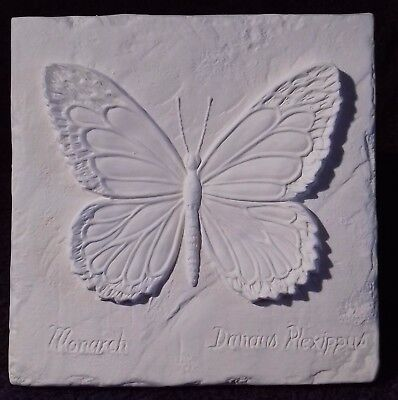 """Paint Your Own Ceramic Bisque - Butterfly Plaque - approx 5½ x 5½"""""""