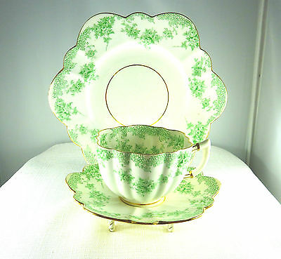 Star China, 1904 The Paragon China, England Trio Tea Set