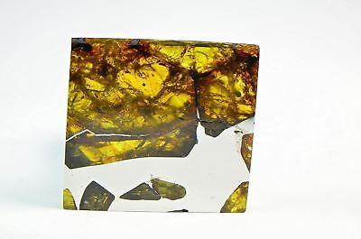 FUKANG PALLASITE Meteorite I 19.7g Top Quality A++ Specimen I Jewelry from Space