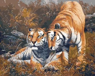 Framed Painting by Number kit Tigers The King of The Forest Animal Beast BB7692
