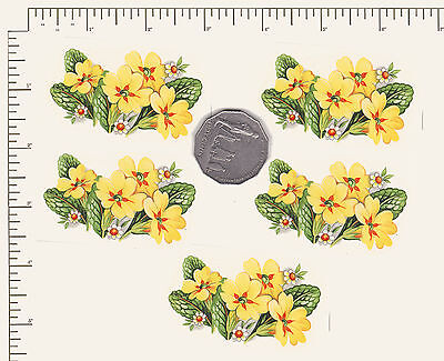 "5 x Primrose Floral Waterslide ceramic decal.decoupage 2 1/2"" x 1 1/2"" PD940"