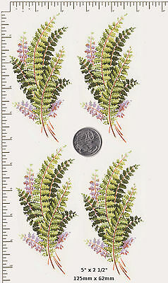 "4 x Waterslide ceramic decal Decoupage Green leaves Fern  5"" x 2 1/2"" PD42a"