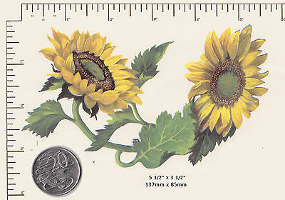 "1 x Waterslide ceramic decal Decoupage Sunflowers Floral 5 1/2"" x 3 1/2""  PD43a"