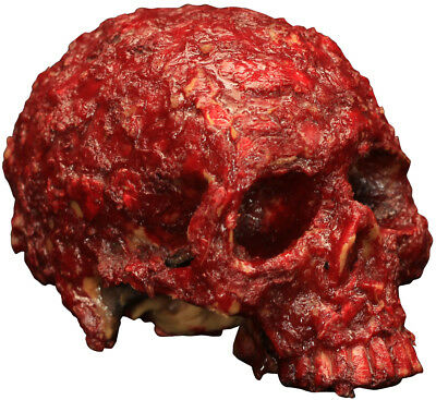 Bloody Scab Resin Skull Halloween Party Prop Gruesome Fun