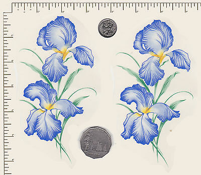 "2 x Waterslide ceramic decals Decoupage Flowers Blue Iris 6"" x 3"" PD832"