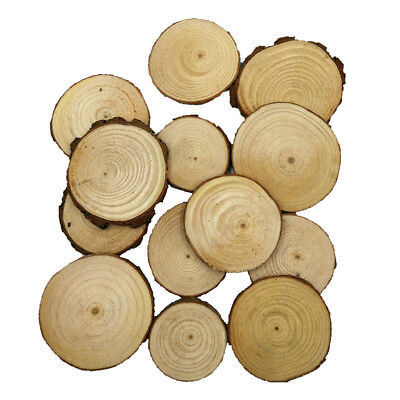 20x Wooden Wood Log Slices Discs Round Decorative Rustic Wedding Pyrography