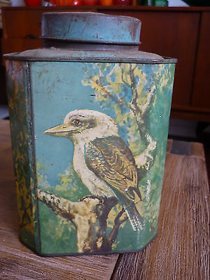 BUSHELL TEA tin NATIVE ANIMALS  1LB NET - VERY GOOD ++